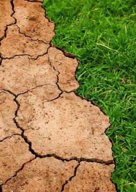 """Naturwissenschaftliche Fachgesellschaften zum Klimawandel: """"Hört auf die Wissenschaft!"""""""